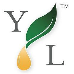 find Young Living consultants