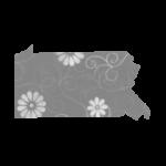 find direct sales consultant in Pennsylvania