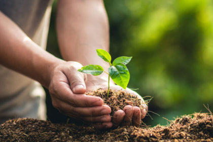 young living donation earth day arbor day foundation treeutah planting trees